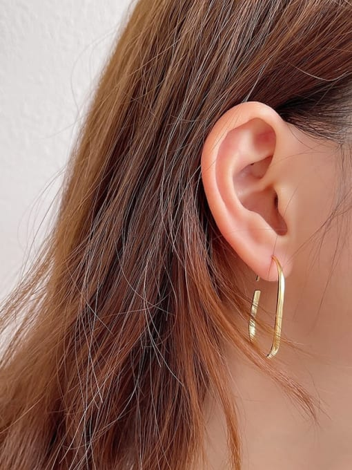 Boomer Cat 925 Sterling Silver Geometric Minimalist Hook Earring 1