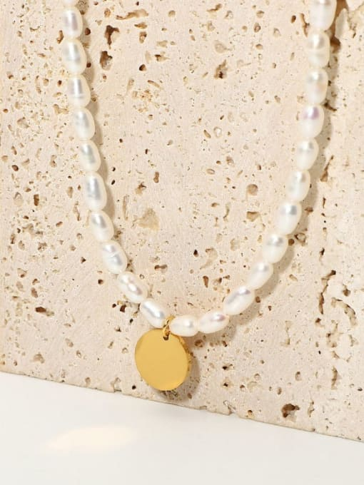 A TEEM Titanium Steel Freshwater Pearl Round Minimalist Necklace 0