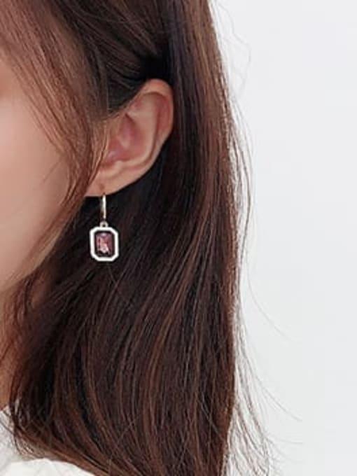 Luxu Brass Cubic Zirconia Geometric Trend Hook Earring 2