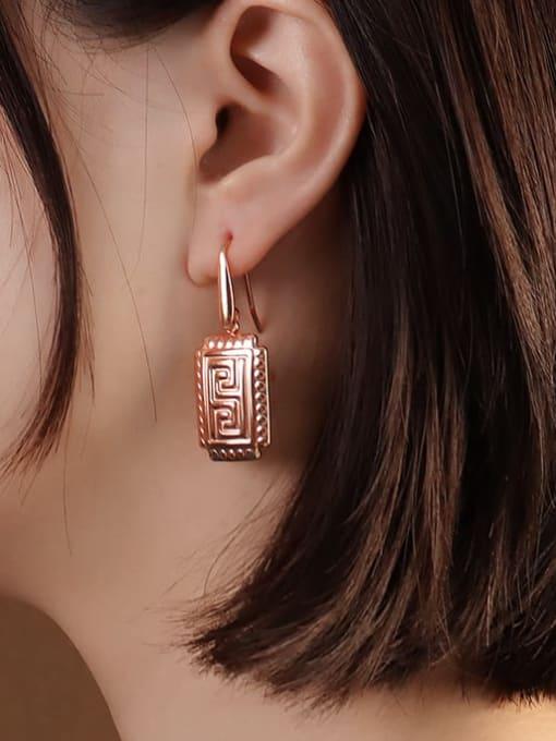 Rose Gold Earrings Titanium Steel Geometric Vintage Hook Earring