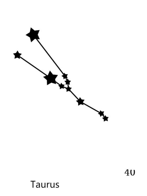 40 Taurus Stainless steel Constellation Minimalist Round Pendant Necklace