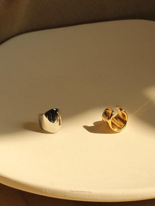 ACCA Brass Irregular Minimalist Single Earring (Single) 2