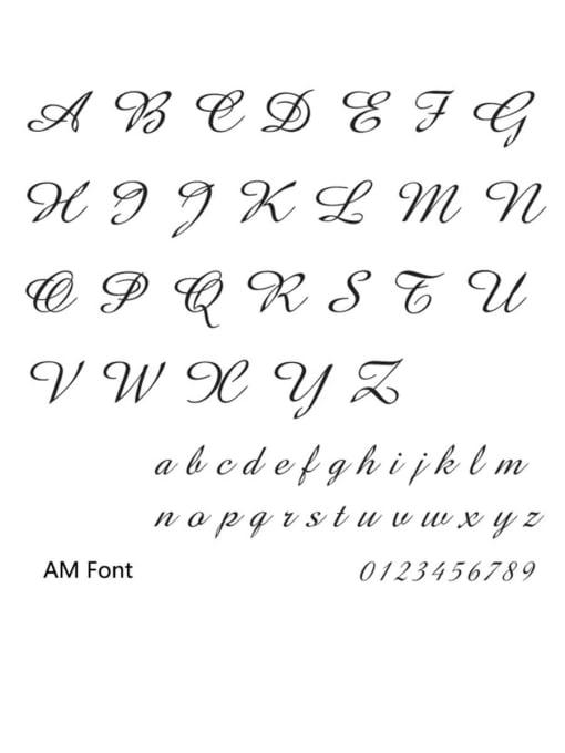AM Stainless steel Letter Minimalist Custom Name Earrings