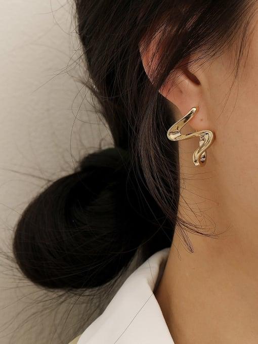 HYACINTH Brass Smooth Irregular Minimalist Stud Earring 2