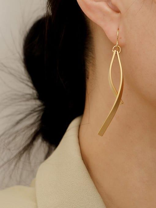 HYACINTH Brass Smooth Irregular Minimalist Hook Earring 2