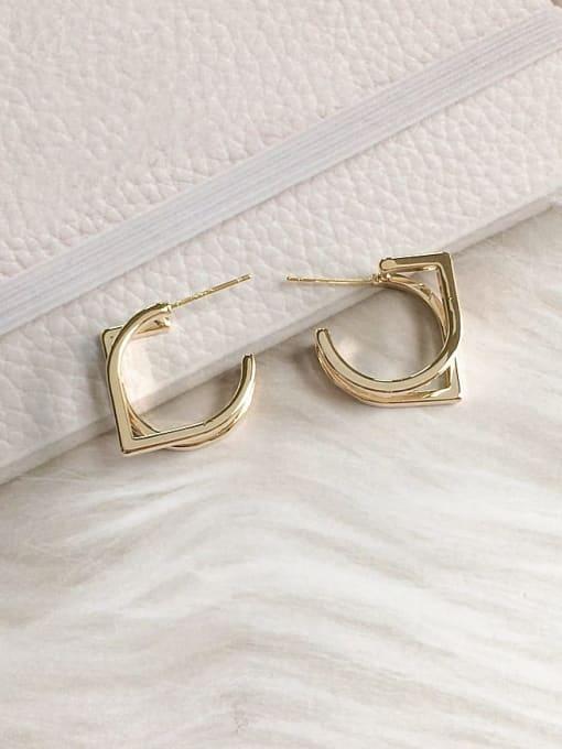 KEVIN Brass Irregular Trend Hoop Earring 0