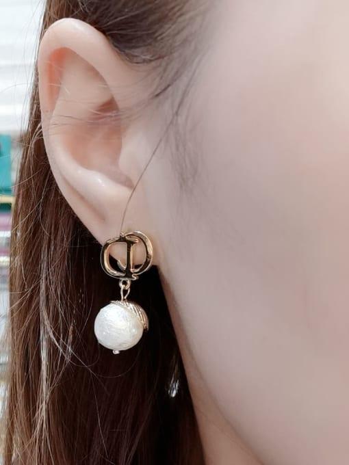 KEVIN Zinc Alloy Imitation Pearl Irregular Trend Drop Earring 1